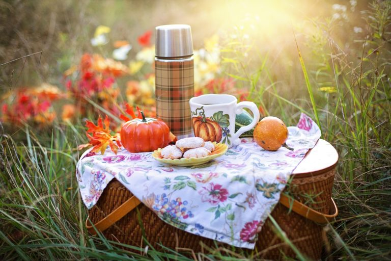 picknick vechtdals mooiste